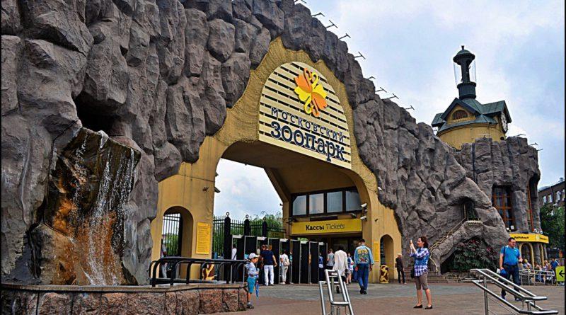 Живые уроки,Живые уроки в Москве, школьная экскурсия, детская экскурсия, экскурсии для школьников, зоопарк Москвы, Московский зоопарк, Москва, образовательные экскурсии
